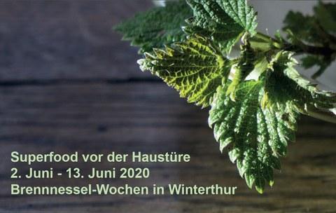 Wildkräuter in Winterthur
