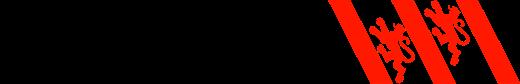 Logo Stadt Winterthur, zur Startseite