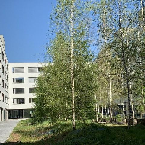 Grüne Innenhöfe erhöhen die Wohnqualität. (Foto: Irene Küpfer). Vergrösserte Ansicht