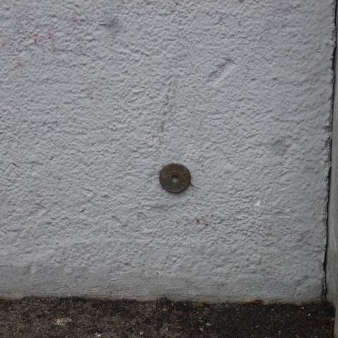 Mauerbolzen. Vergrösserte Ansicht